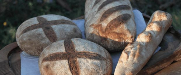 Sourdough Bread Clay Ovens and Leaven