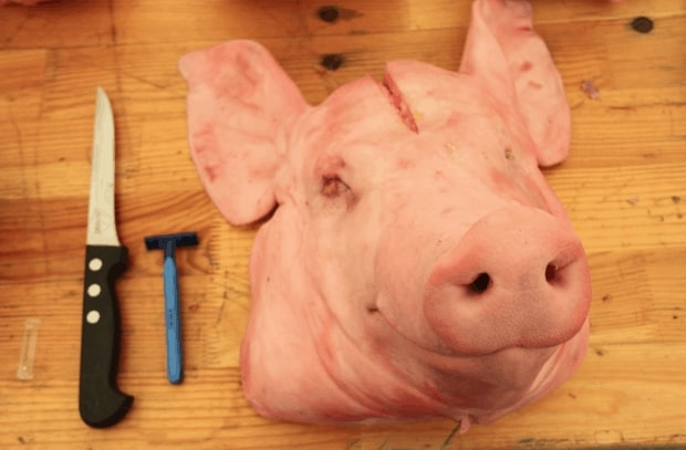 Rolled Pig's Head